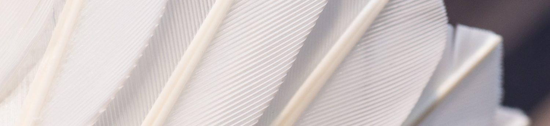 Badminton Magazine